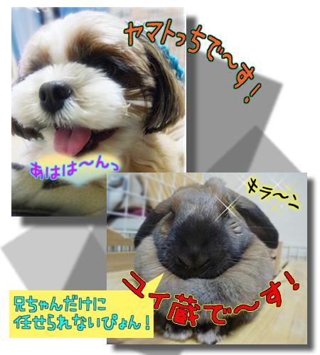 09_0315_01.jpg