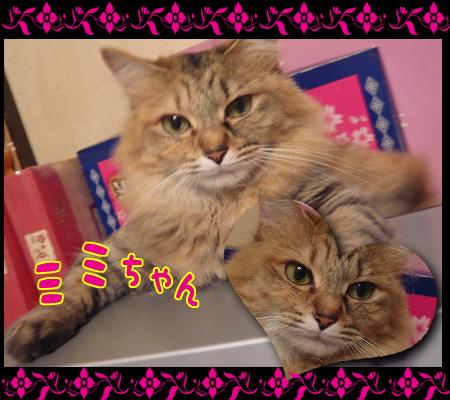 09_07_mimi02.jpg