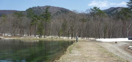 2011_4_15 Kashimayari-4