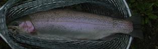 2011_6_24鹿島槍‐4