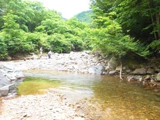 2011_7_1-2.jpg