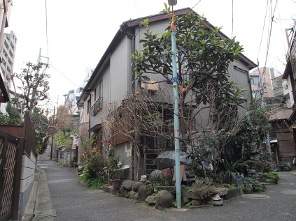 2011011709.jpg