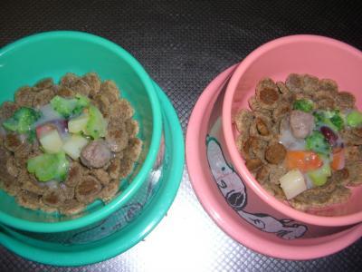momo&pepeちゃんの朝ごはん