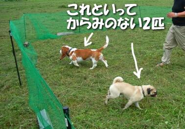 200807_shima1.jpg