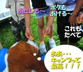 200807_shima11.jpg