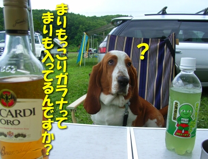 200807_shima3.jpg