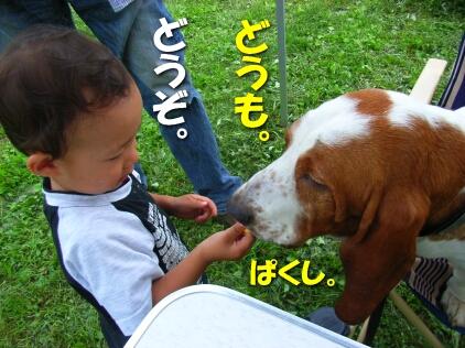 200807_shima5.jpg