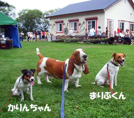 200808_naganuma1.jpg