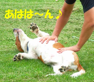 200808_naganuma12.jpg