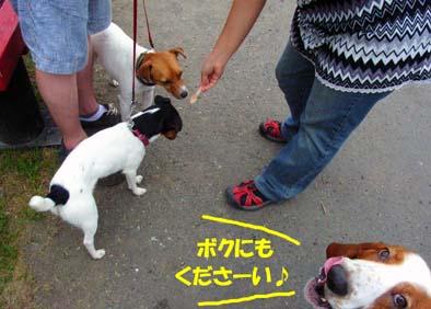 200808_naganuma3.jpg