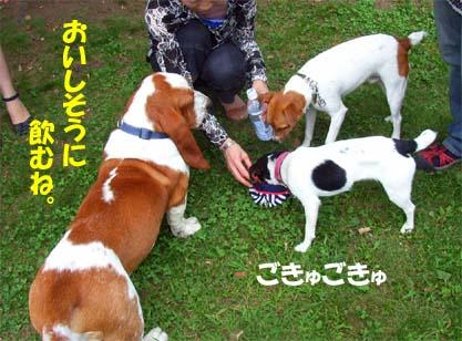 200808_naganuma4.jpg