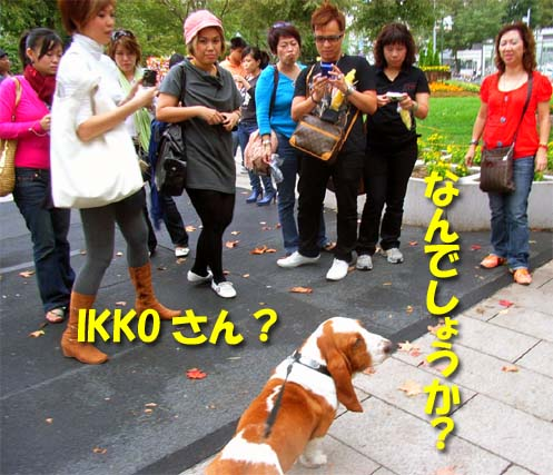 200808_odoripk2.jpg