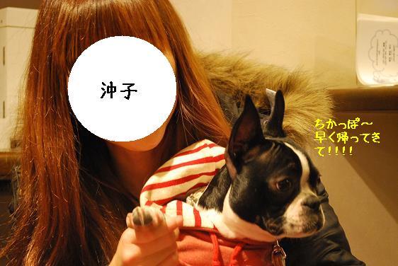 20110301DSC_8261.jpg