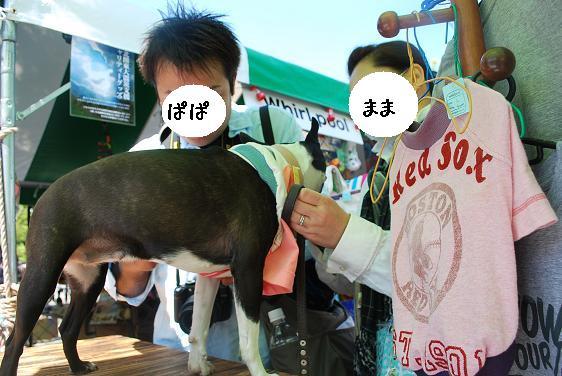 20110420DSC_9207.jpg