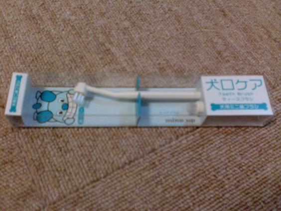 20110509CIMG5895.jpg