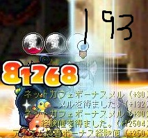 Maple110804_214448.jpg