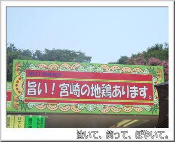 宮崎地鶏の店.jpg
