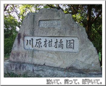 甘樫丘川原展望台
