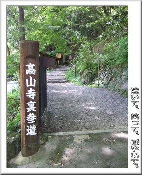 高山寺参道