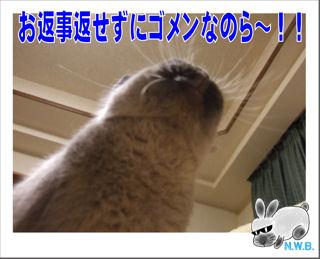 ゴメンなのら~!!