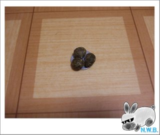 1円玉選手権