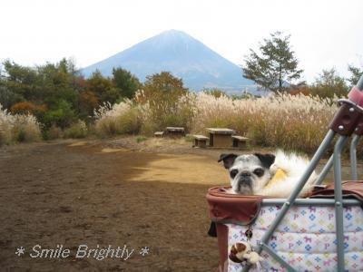 081103富士山と