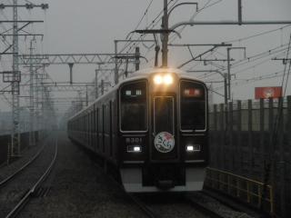 PAP_0273.jpg