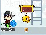 Maple0466.jpg