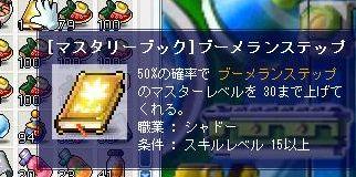 Maple2165.jpg