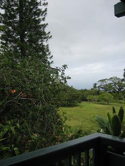カパアウの宿の庭1