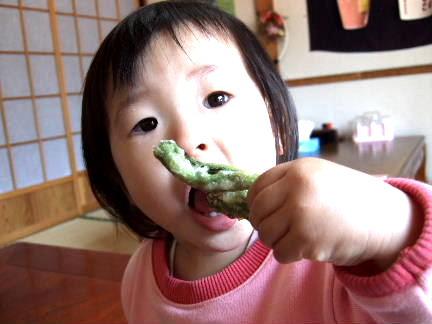 山菜としめじ