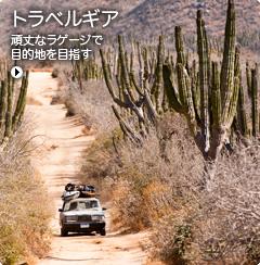 M3_Packs_Luggage_0119_S11-jp.jpg
