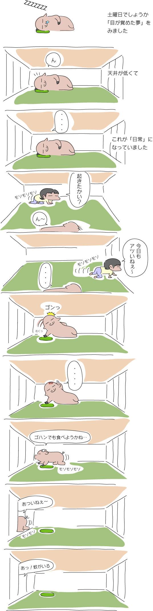 低い天井の夢