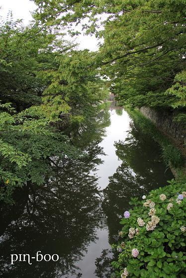 7.29近江八幡