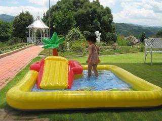 プール 1暑