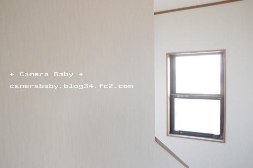 DSC_0020_512のコピー