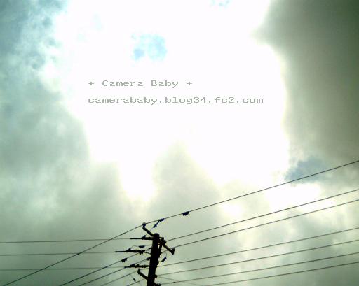 IMG_0010_512のコピー