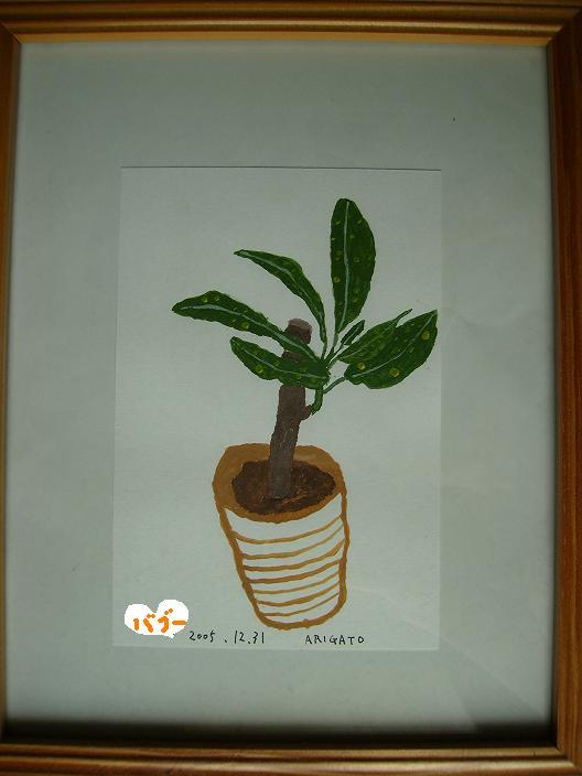 ありがとう植物