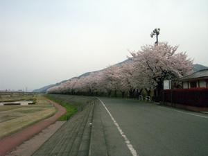nan-2.jpg