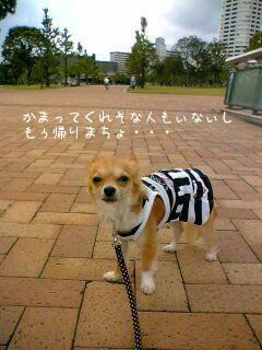 """公園内を一緒にトコトコ④ """"by携帯"""""""