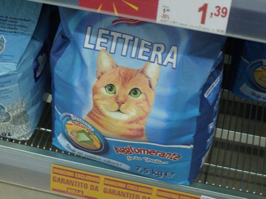 ローマの猫砂