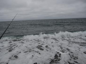 カラフトマス釣行 天候厳しすぎ