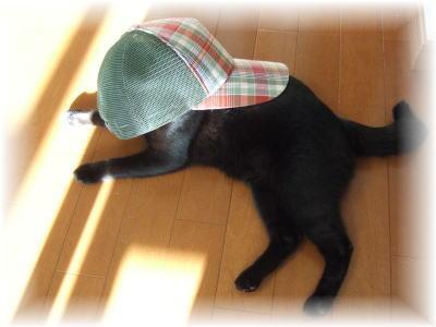 帽子をかぶったジジ