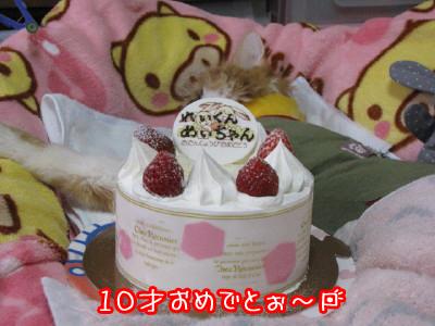 0-1_20090414155132.jpg
