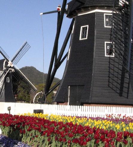 ハウステンボス 風車