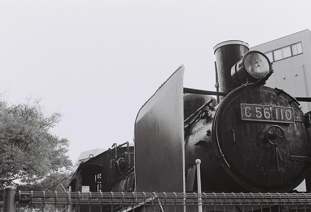 20110512 (6)