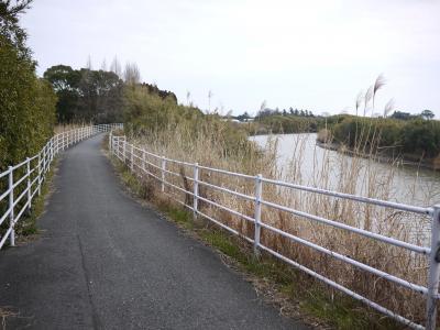 茂原自転車道3