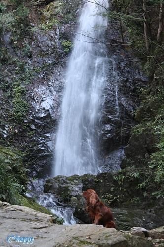 払沢の滝 081