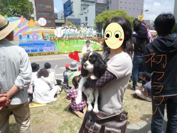 flower+festival_convert_20090505225310.jpg