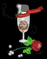 ジャムクリスマスシャンパンのコピー